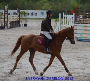 ULTRASON-LE-PIN-2012-2