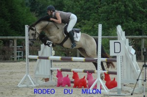 rodeo-juillet-2010-3