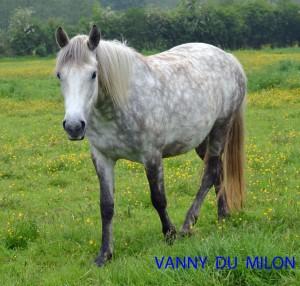vanny-du-milon-2012