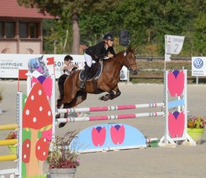 best-of-sologn-pony-2016-1